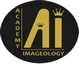 Academy of Imageology35